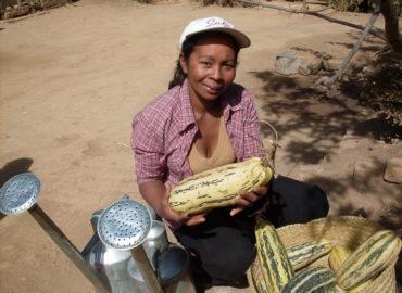 Sabotsy-Namehana, Madagascar (2011)