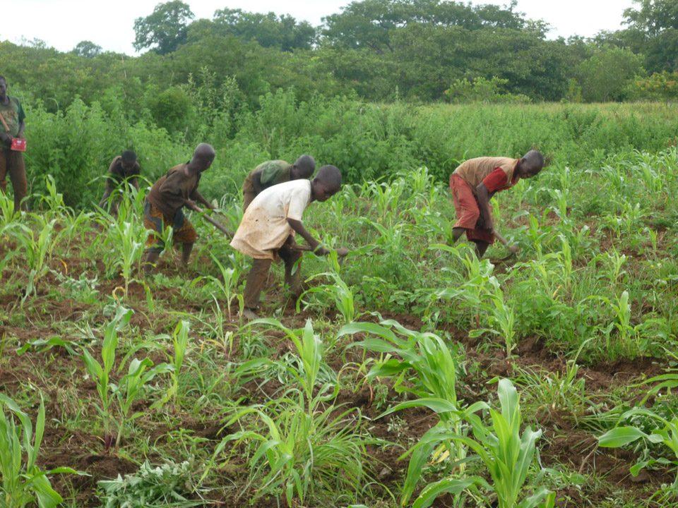 Korhogo, Costa D'Avorio (2010): Ex ragazzi soldati… accogliamoli I, II, II