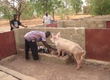 Ouagadougou, Burkina Faso (2010): progetto di lotta alla fame